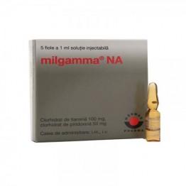 Мильгамма 1 мл (10 шт)